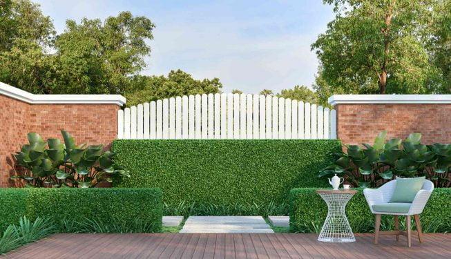 Holzterrasse mit Buchsbäumen und Zaun